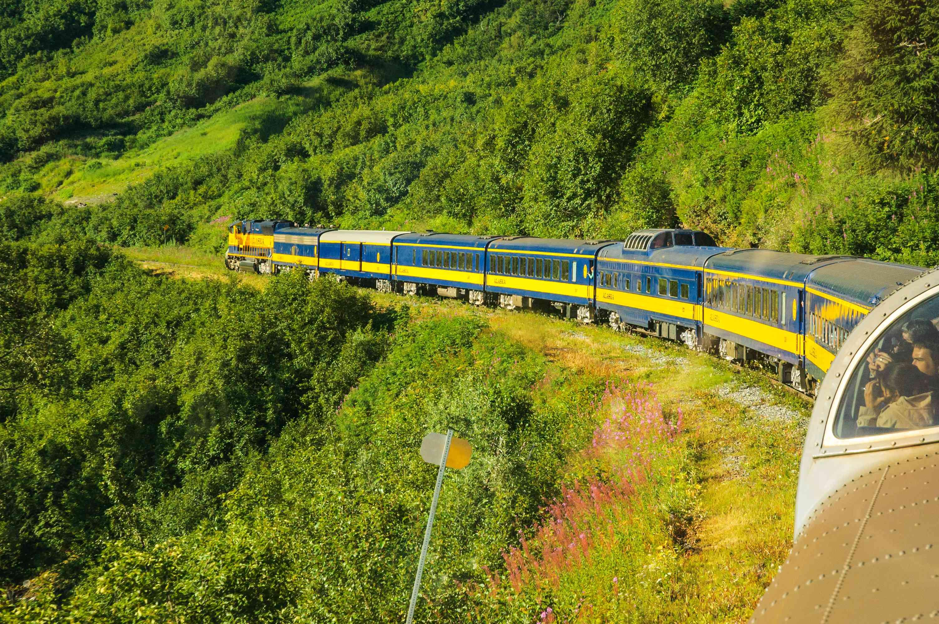 Alaska Coastal Classic train with green foliage all around