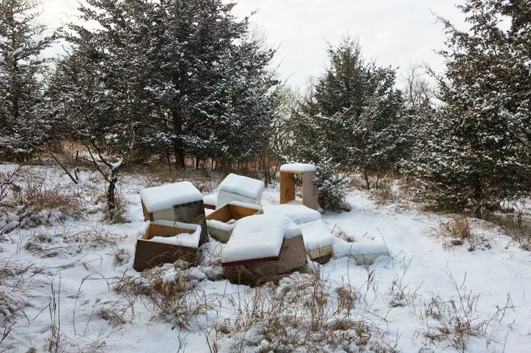 Toppled bee hives covered in snow