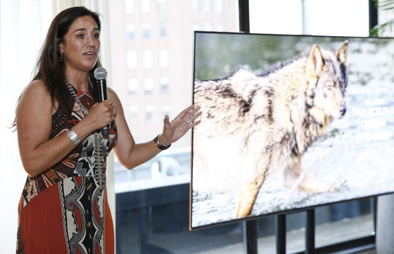 A conservation photographer speaking about their work at an event.