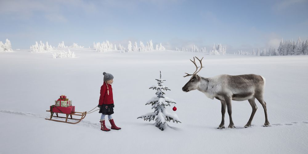 Girl with gifts and a reindeer