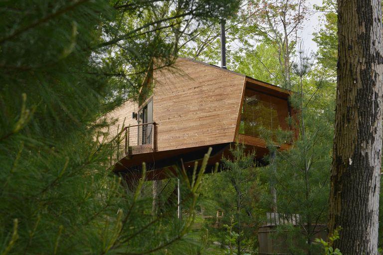 La casa del árbol geométrica sobre pilotes emerge del bosque