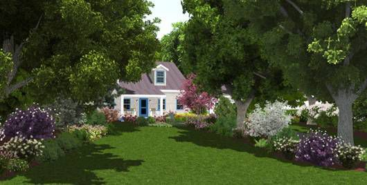 native plant landscaping