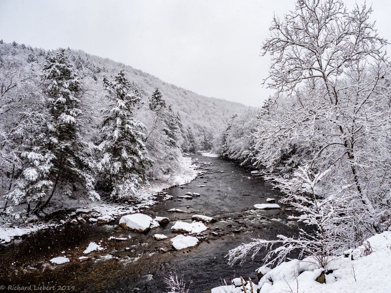 A snowy section of Loyalsock Creek