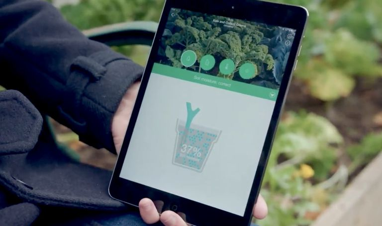 Hand in a garden holding a tablet with soil information display