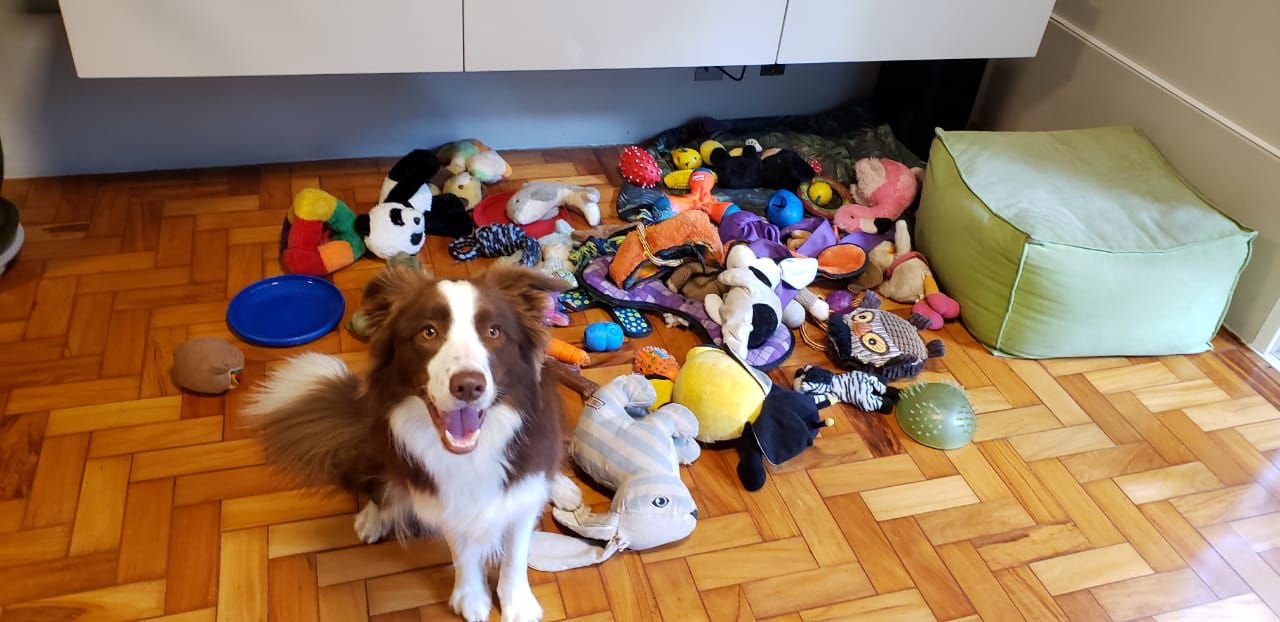 Gaia and her toys