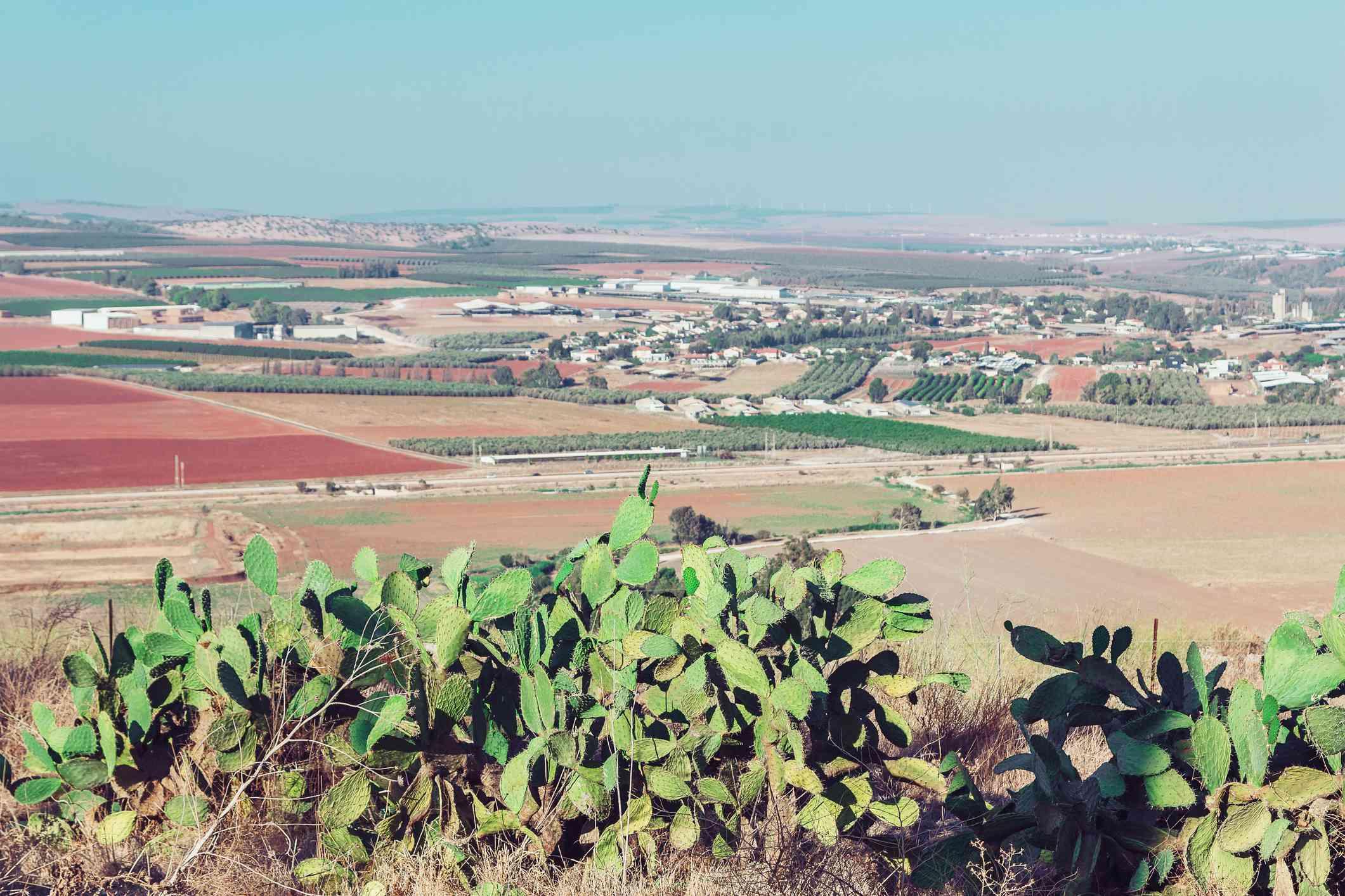 Beit She'an Valley