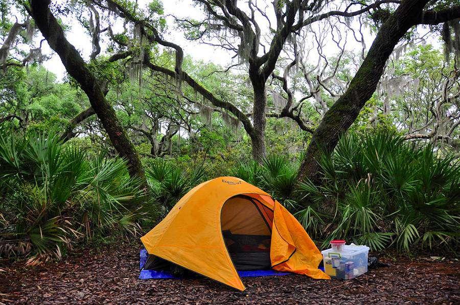 Cumberland Island: Tent camping