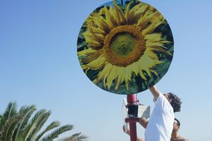 man setting up Saphon's bladeless wind turbine which has an image of a sunflower on it