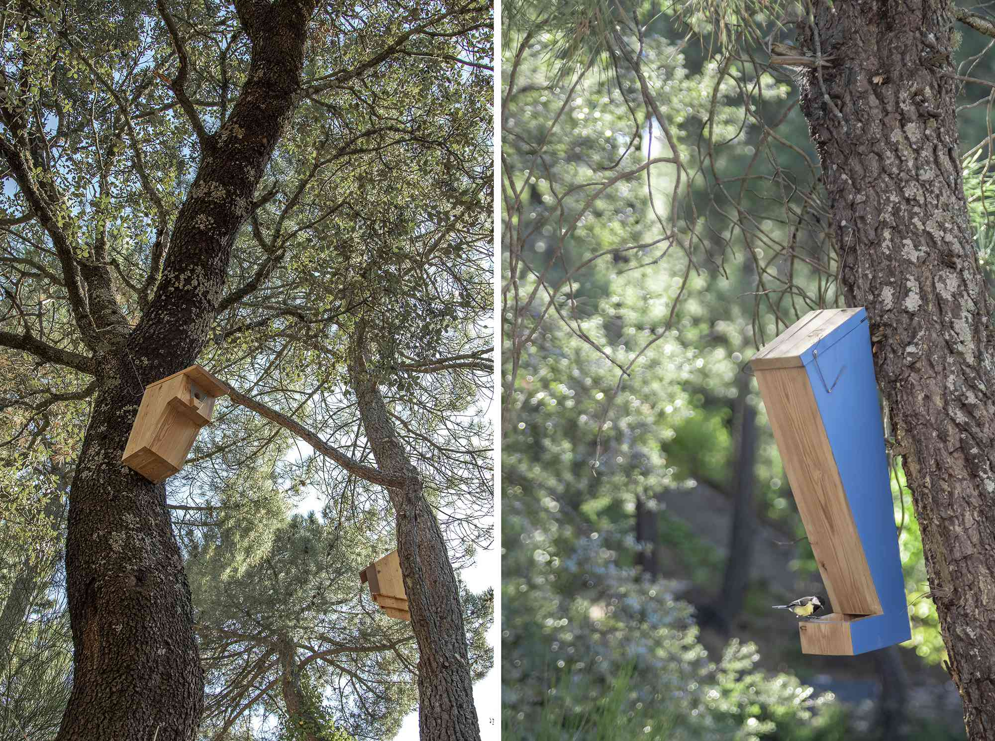 (Synanthro)Love Shack, (Tele)Working Abode by Husos Architects birdhouses