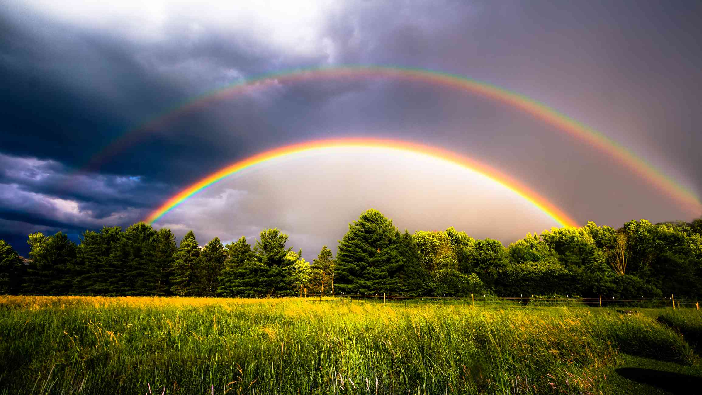 Double rainbow over pasture with evergreen trees and clouds