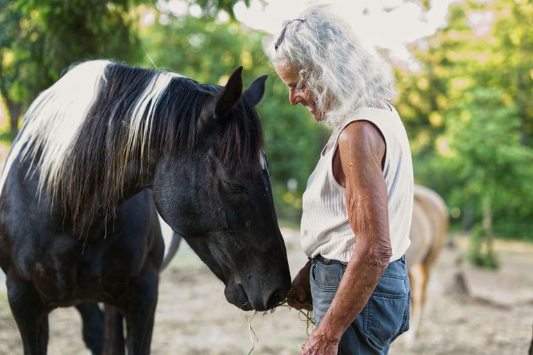 black and white horse nuzzles older woman with long white hair while outside