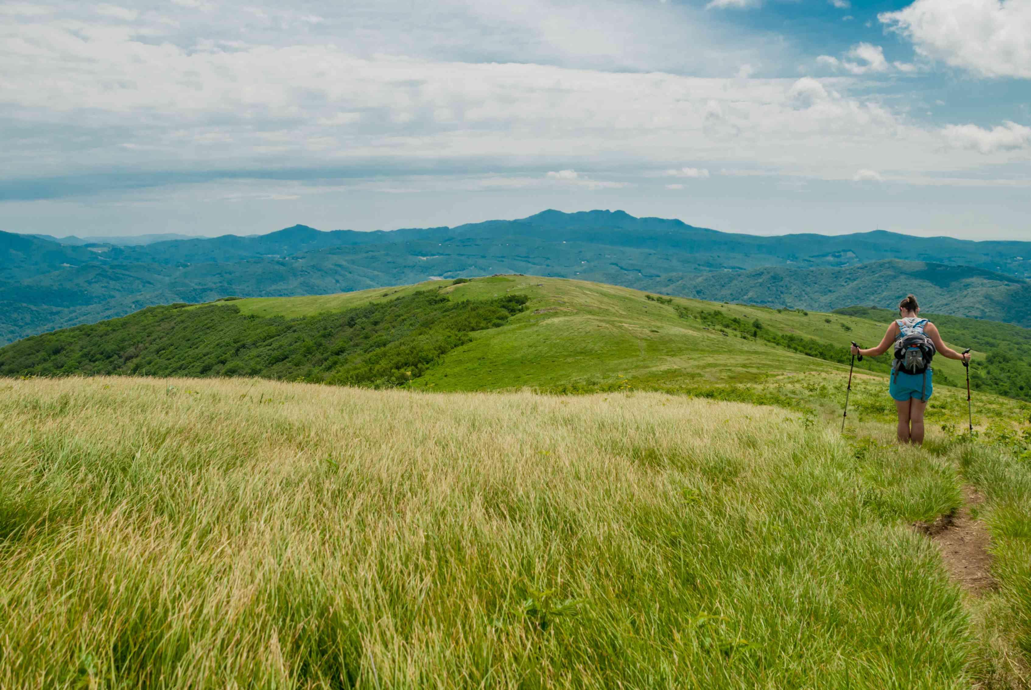 Backcountry in Appalachia