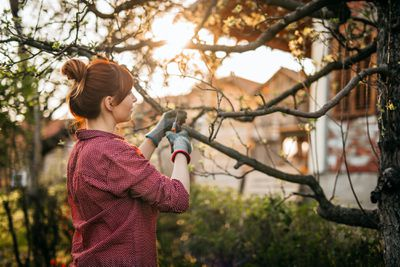 woman pruning a fruit tree