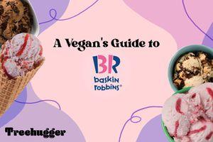 baskin robbins vegan