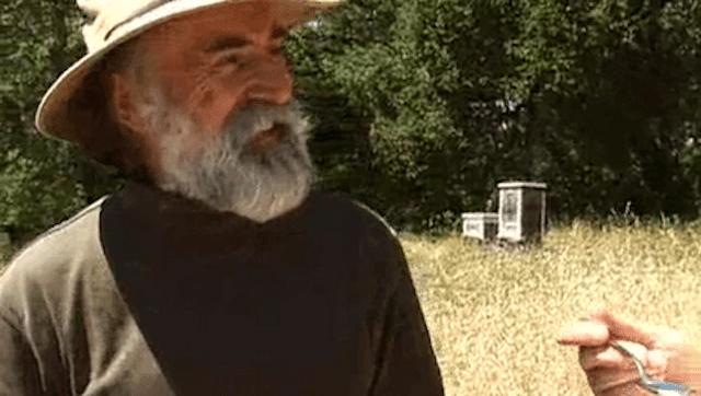 beekeeping video photo