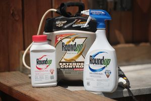 Roundup weed killing products are shown on May 14, 2019 in Chicago, Illinois. A jury yesterday ordered Monsanto, the maker of Roundup, to pay a California couple more than $2 billion in damages after finding that the weed killer had caused their cancer. This is the third jury to find Roundup had caused cancer since Bayer purchased Monsanto about a year ago. Bayer's stock price has fallen more than 40 percent since the takeover.