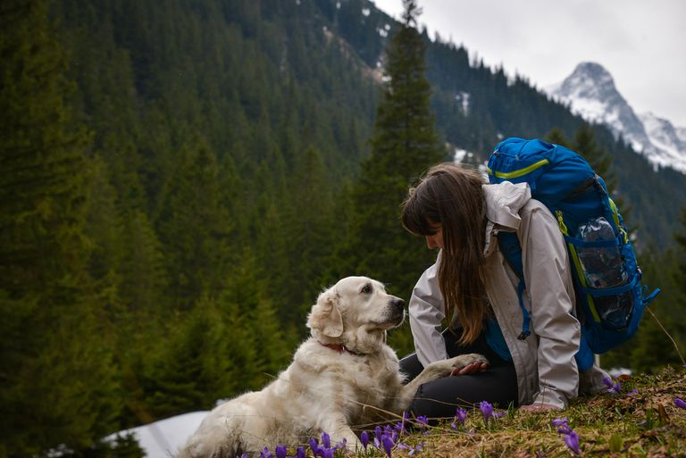dog hiking with woman
