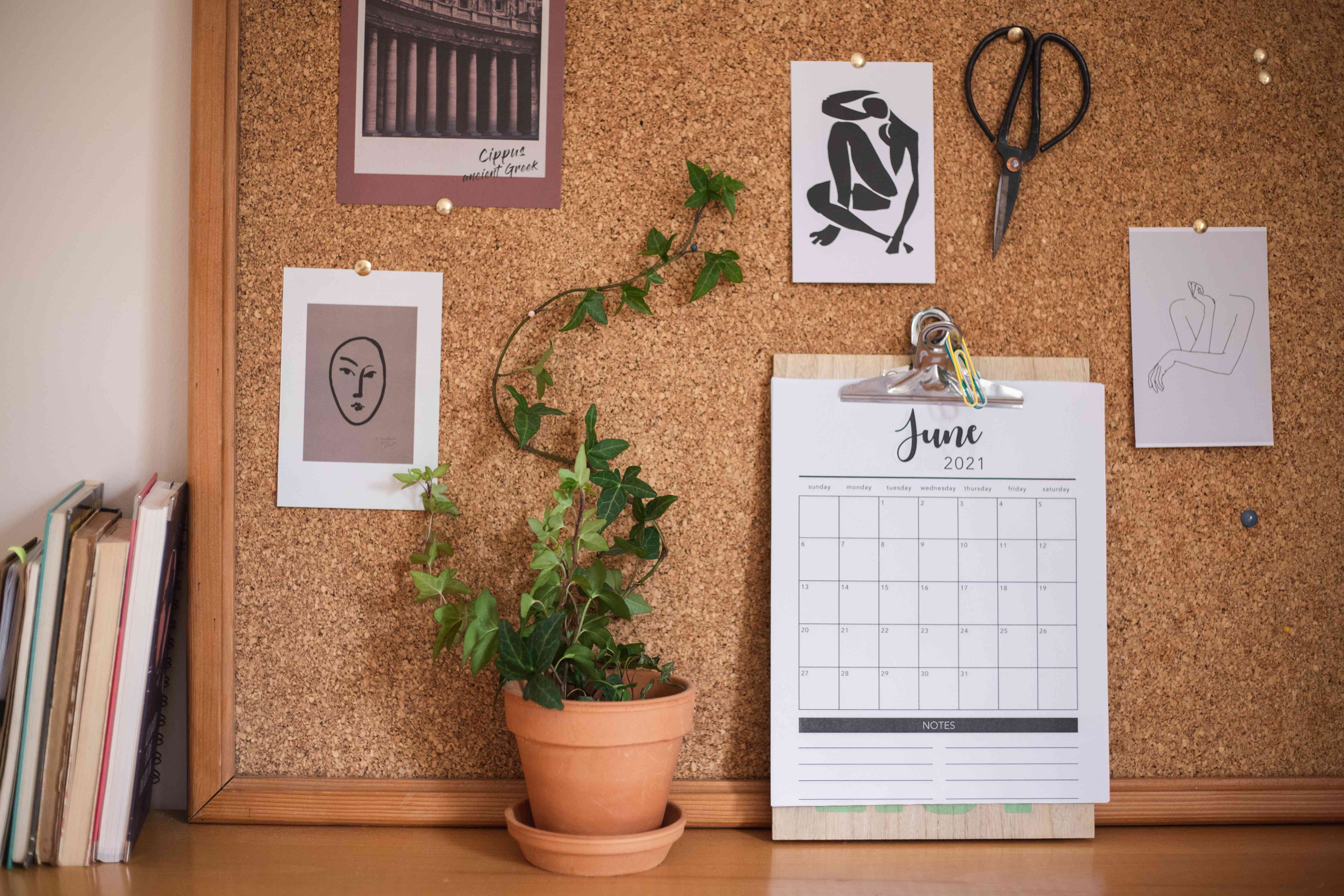 ivy houseplant trained to climb up a cork board pinned with various art