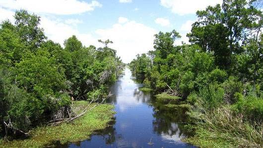 Parque Histórico Nacional Jean Lafitte y Reserva: Guía del usuario