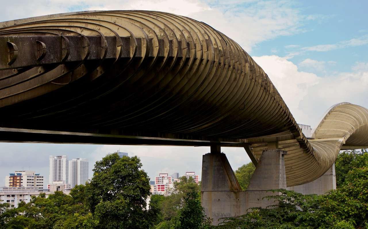The wooden, wavelike Henderson Waves Bridge in Singapore