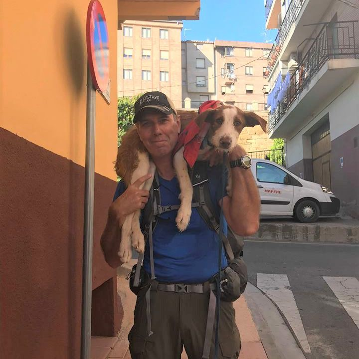 A man carries a dog on his shoulders.