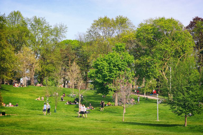 Spring in Toronto Parks at COVID times