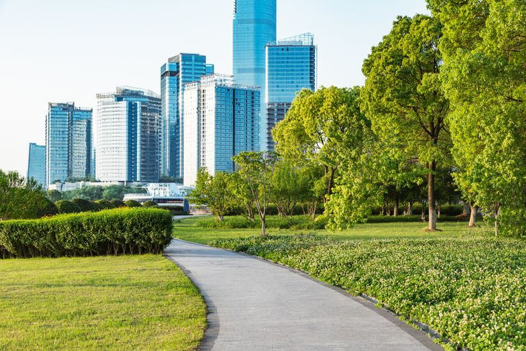 A park with trees with a path and a city in the background.
