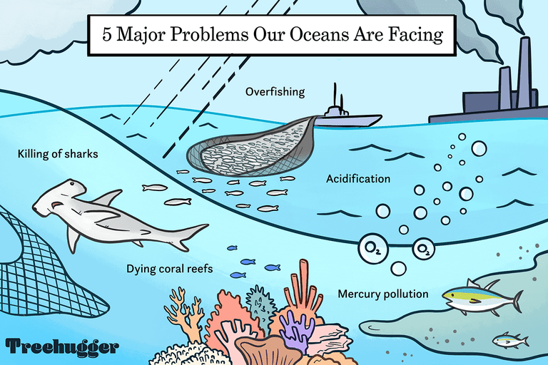 5 major problems oceans are facing