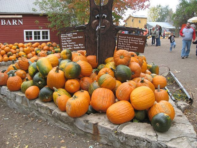 Stack of pumpkins in front of signs pointing to many other attractions