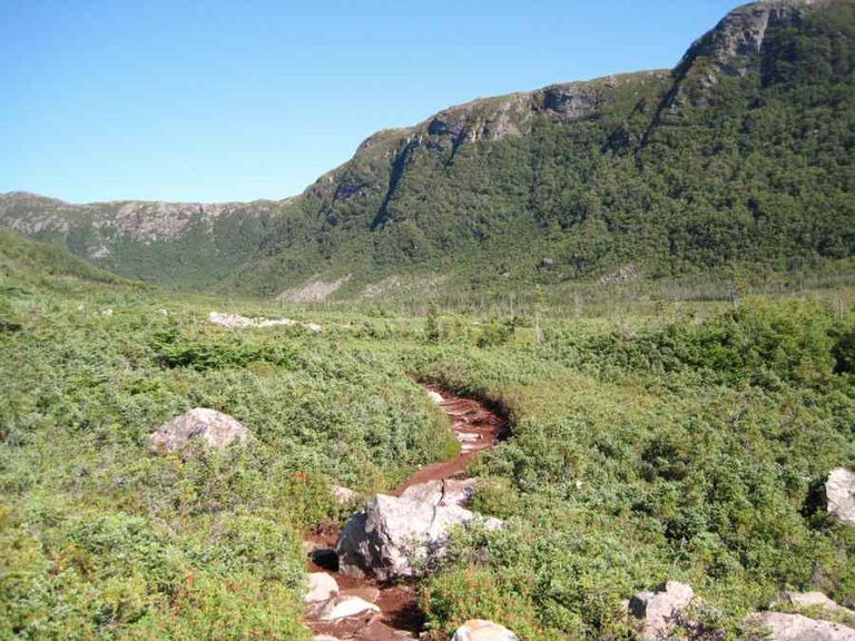 Hiking path in Gros Morne National Park