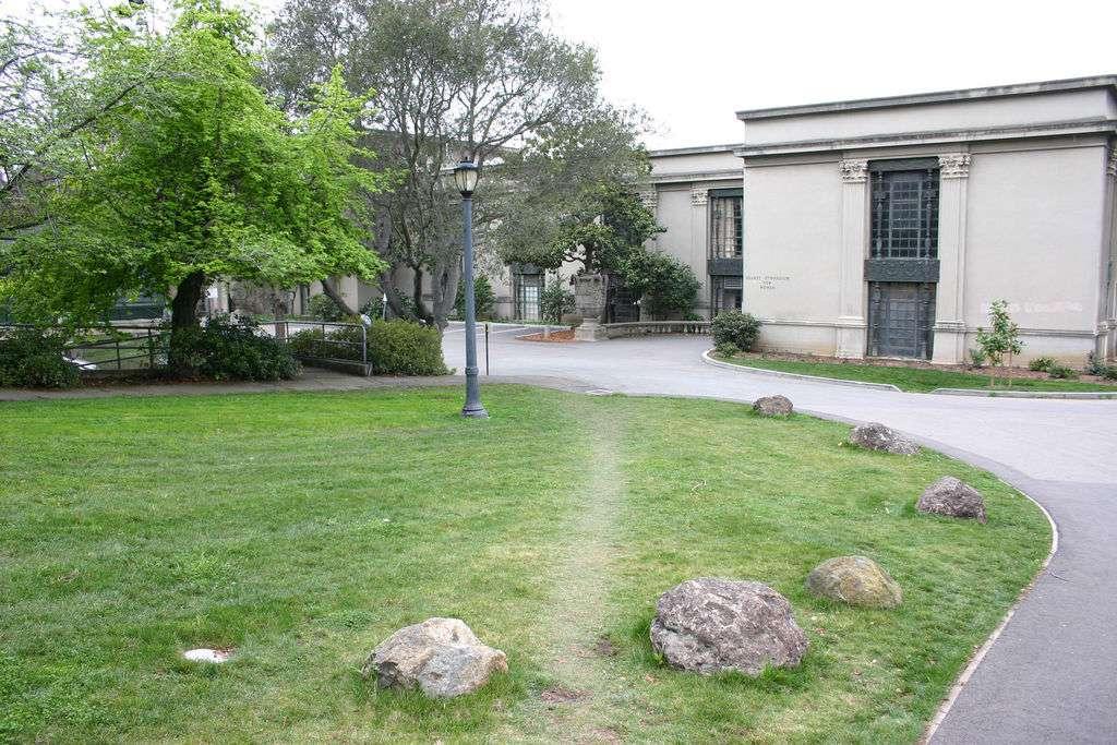 Desire path in Oakland