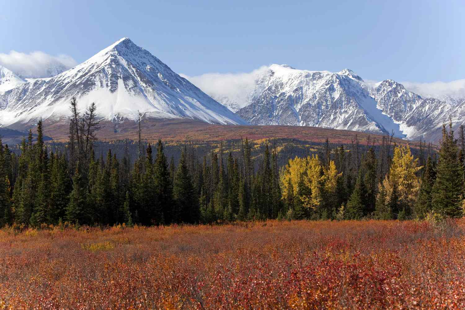 The reddish colors of autumn beneath the snow capped mountains of Kluane National Park and Reserve