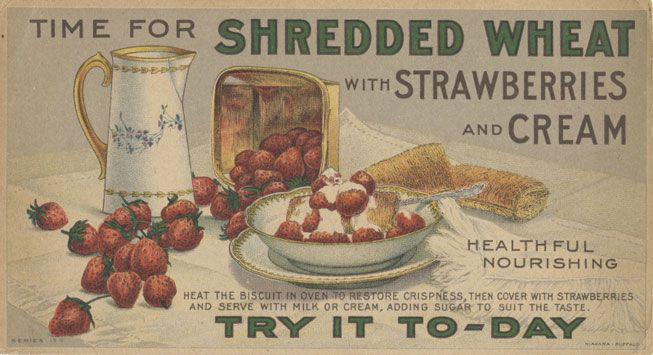 An advertisement for shredded wheat from 1900