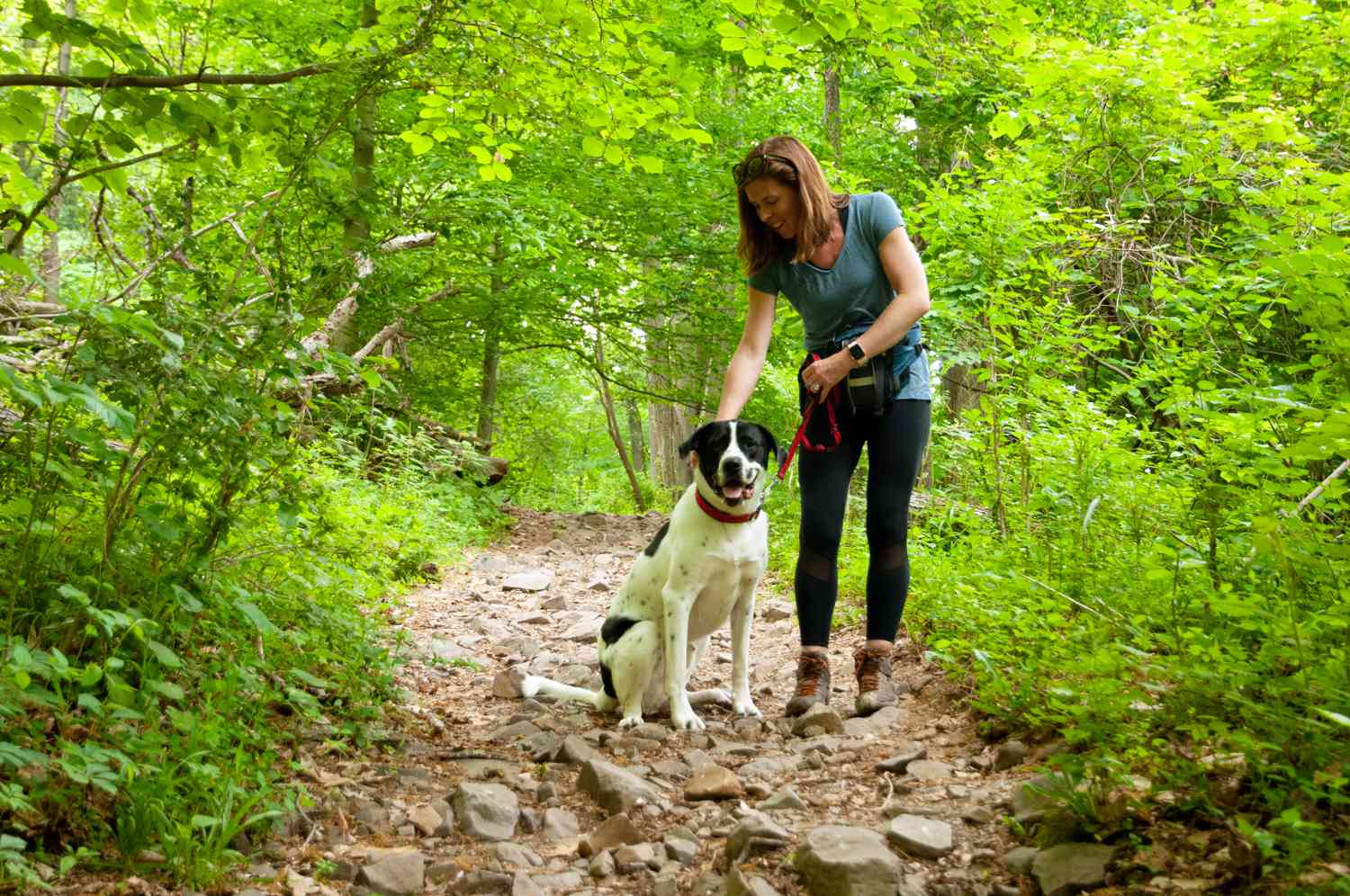 red-headed woman and dog pause on rocky footpath in middle of forest hike
