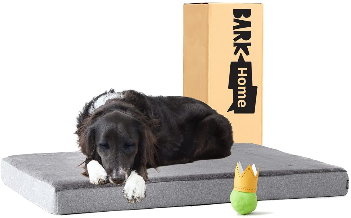 Barkbox Orthopedic Ultra Plush Pressure-Relief Memory Foam Dog Bed