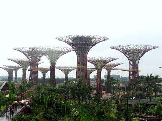 Enormes 'superárboles' biomiméticos echando raíces en el paseo marítimo de Singapur (vídeo)