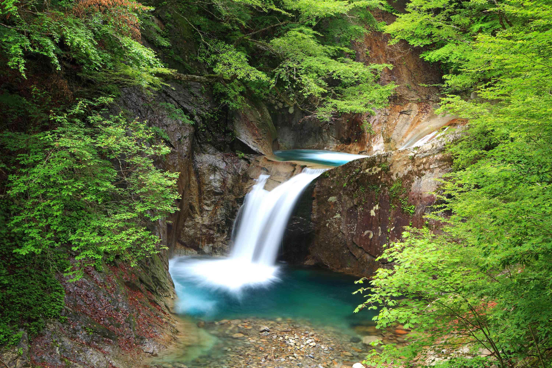 forest waterfall in Nishizawa Valley, Yamanashi Prefecture, Japan