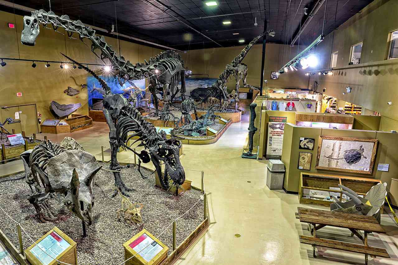 Fossil exhibits inside the Wyoming Dinosaur Center