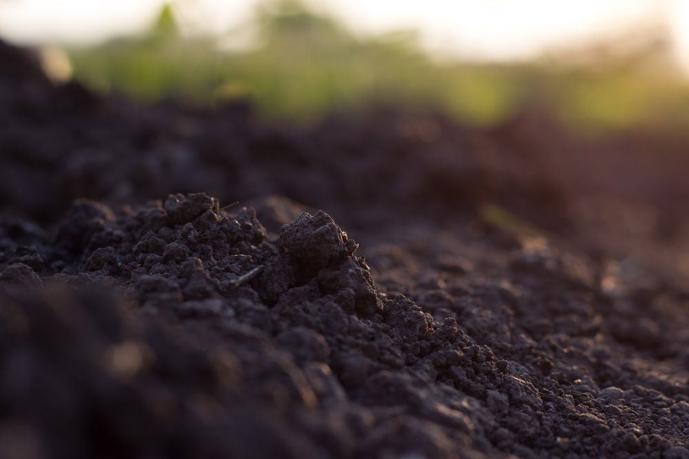 It may take hundreds or thousands of years to form new soil.