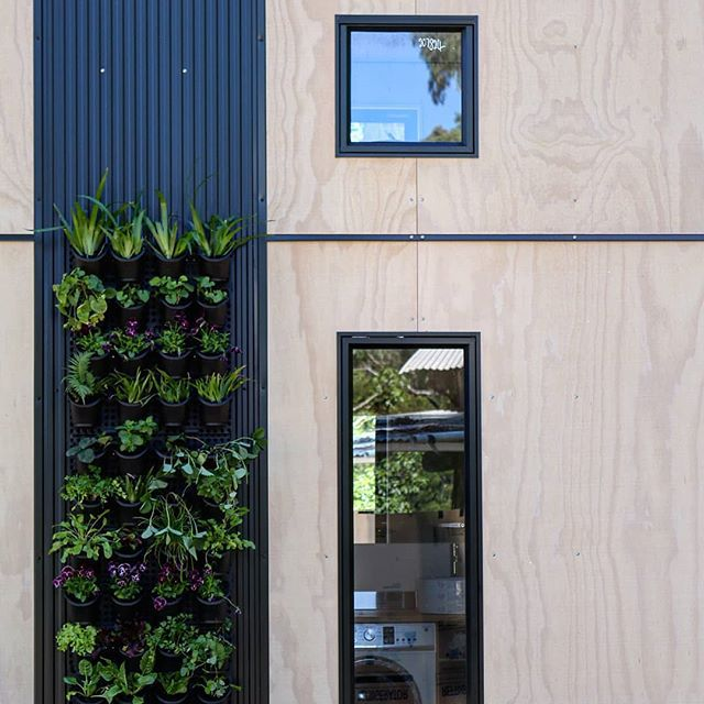 Exterior wall with a hanging grid of plants
