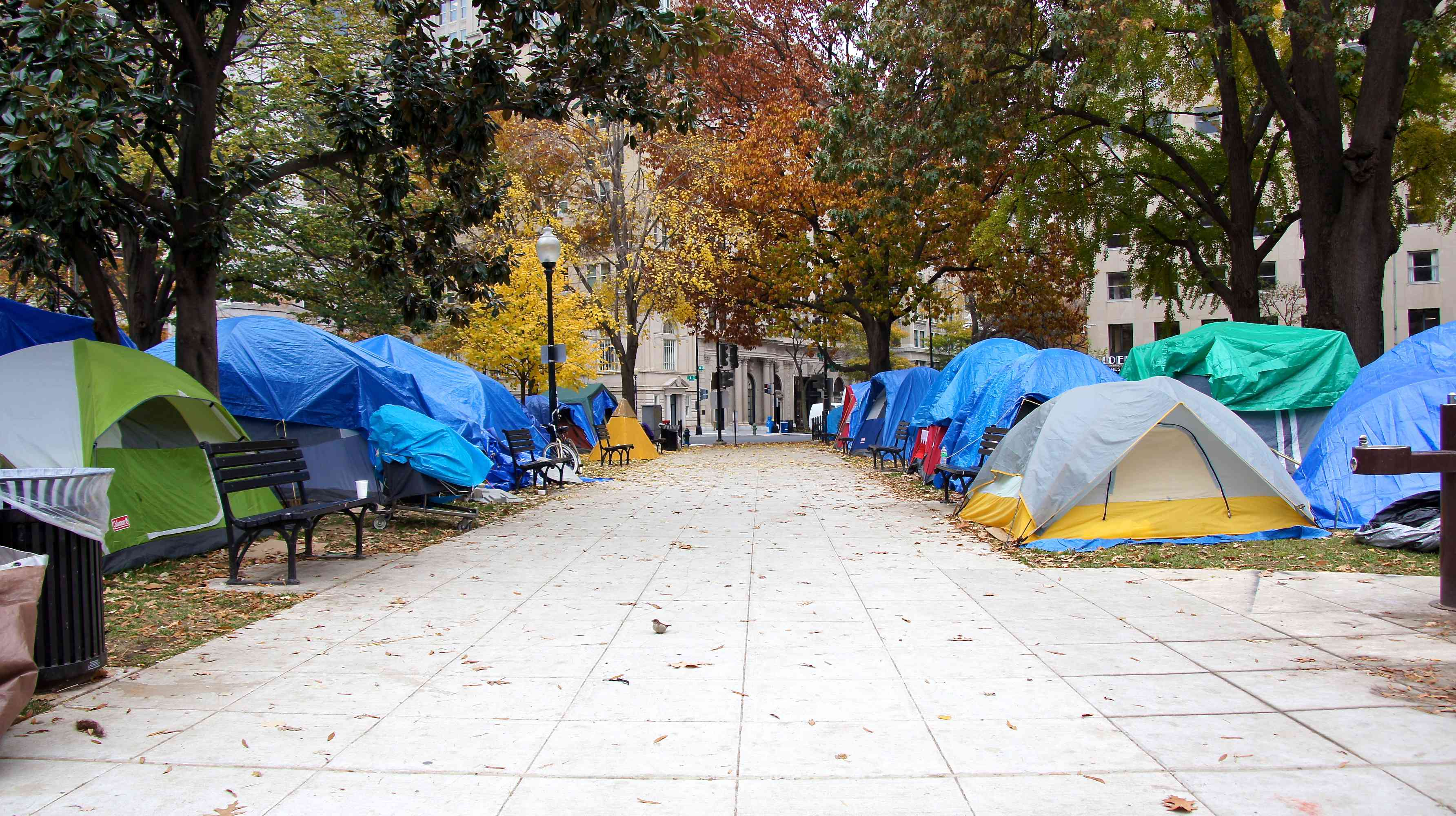 A row of tents in McPherson Square in Washington, D.C.
