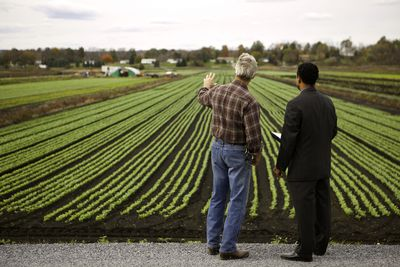 Farmer and Banker looking at crops.