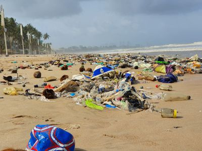 Trash on the beach in Mumbai