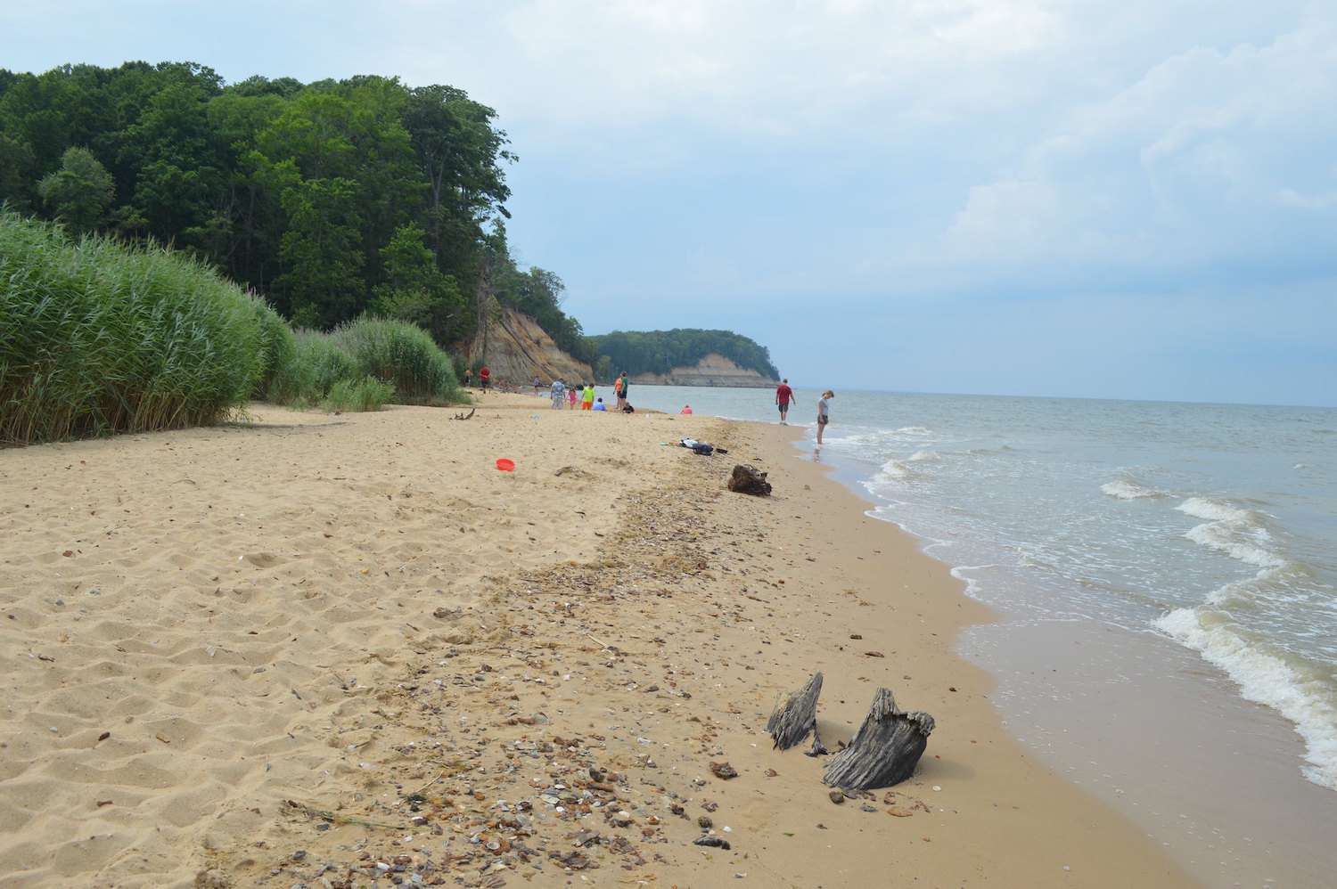 A sandy beach on a partially cloudy day at Calvert Cliffs State Park in Maryland
