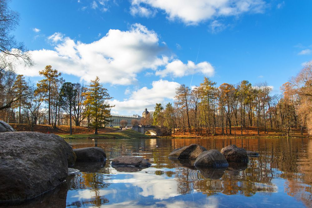 A small lake in a forested setting in front of a blue sky