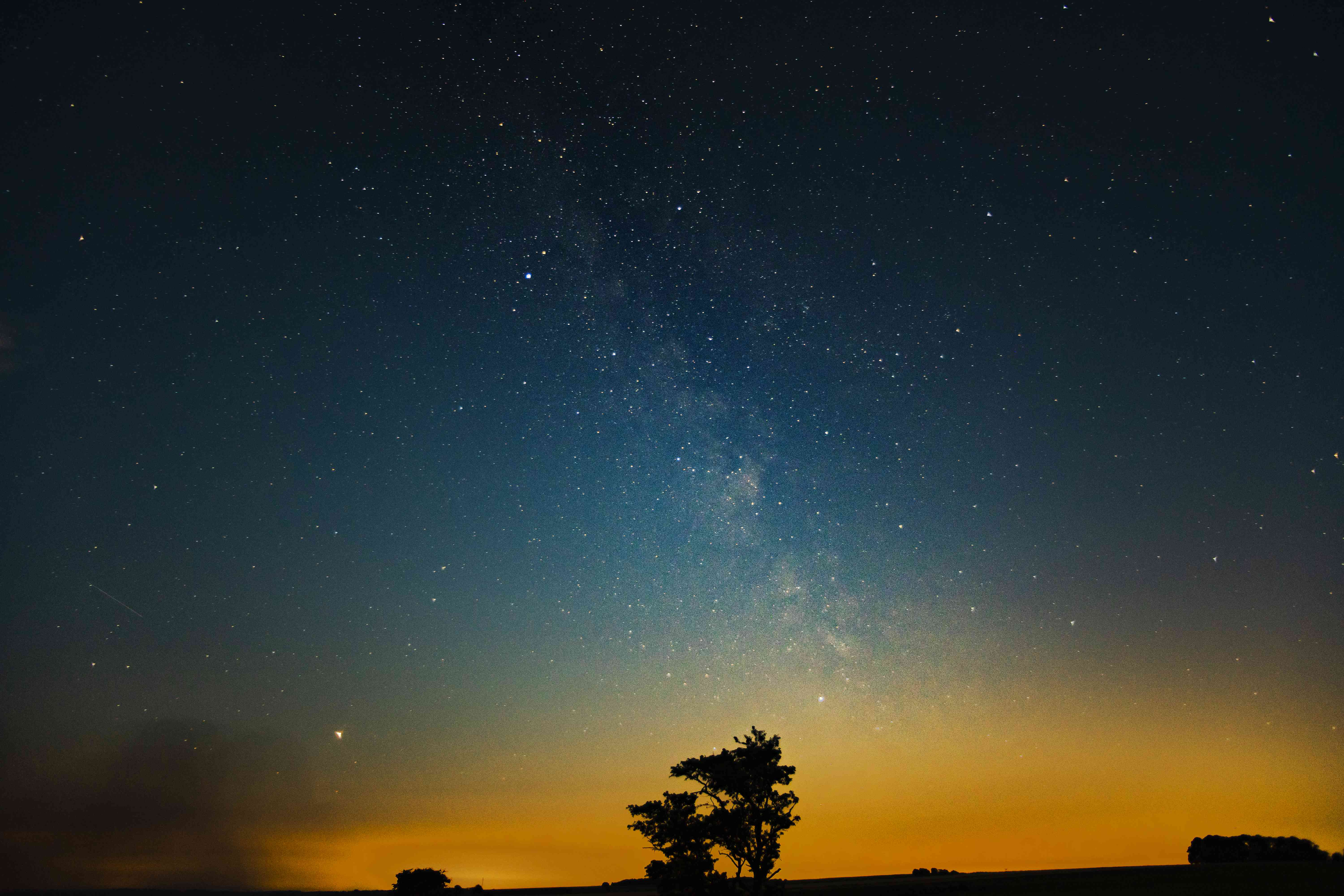 Milky Way in orange and blue sky over tree silhouettes
