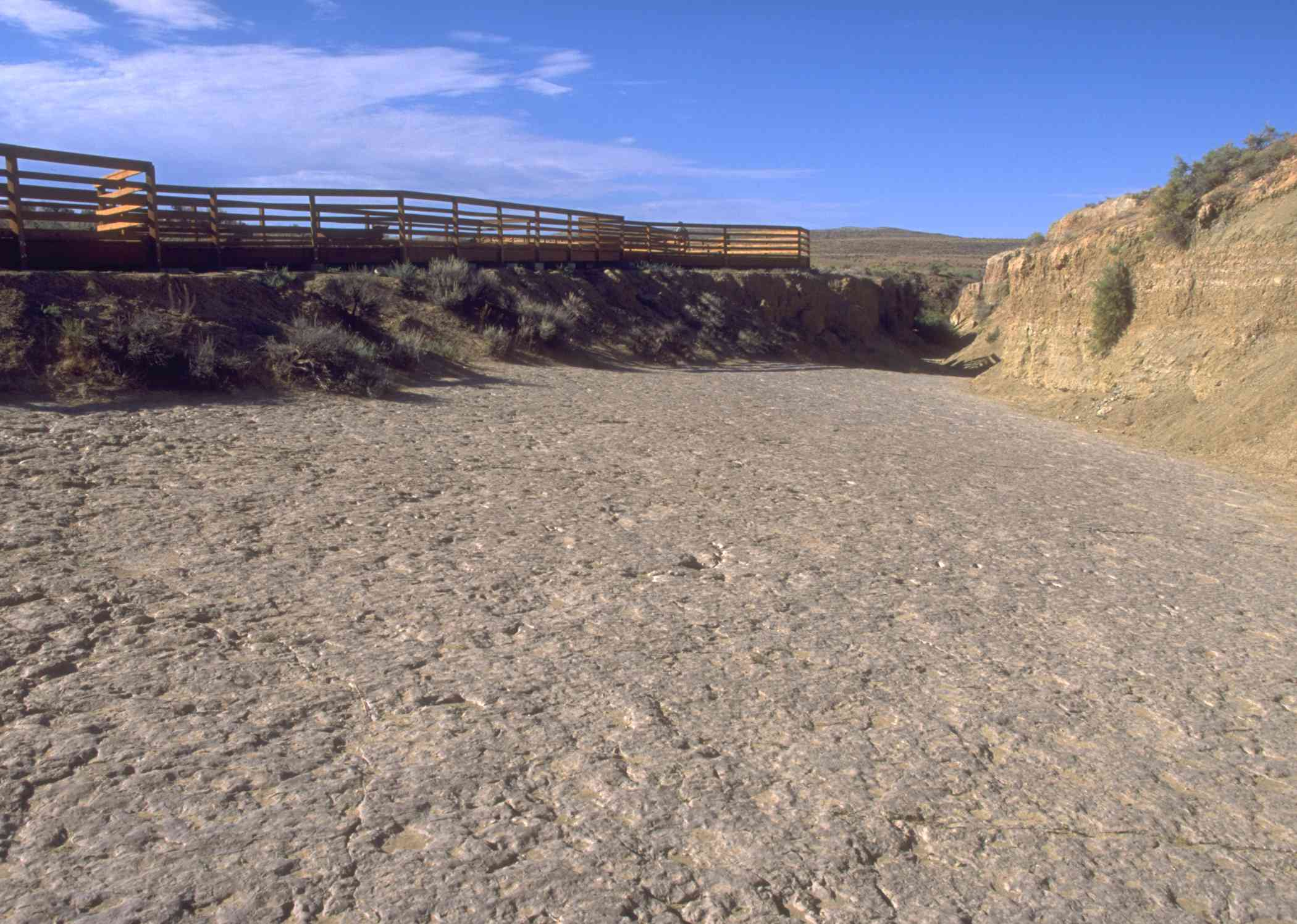 A rocky plain covered with fossilized tracks in front of an observation deck