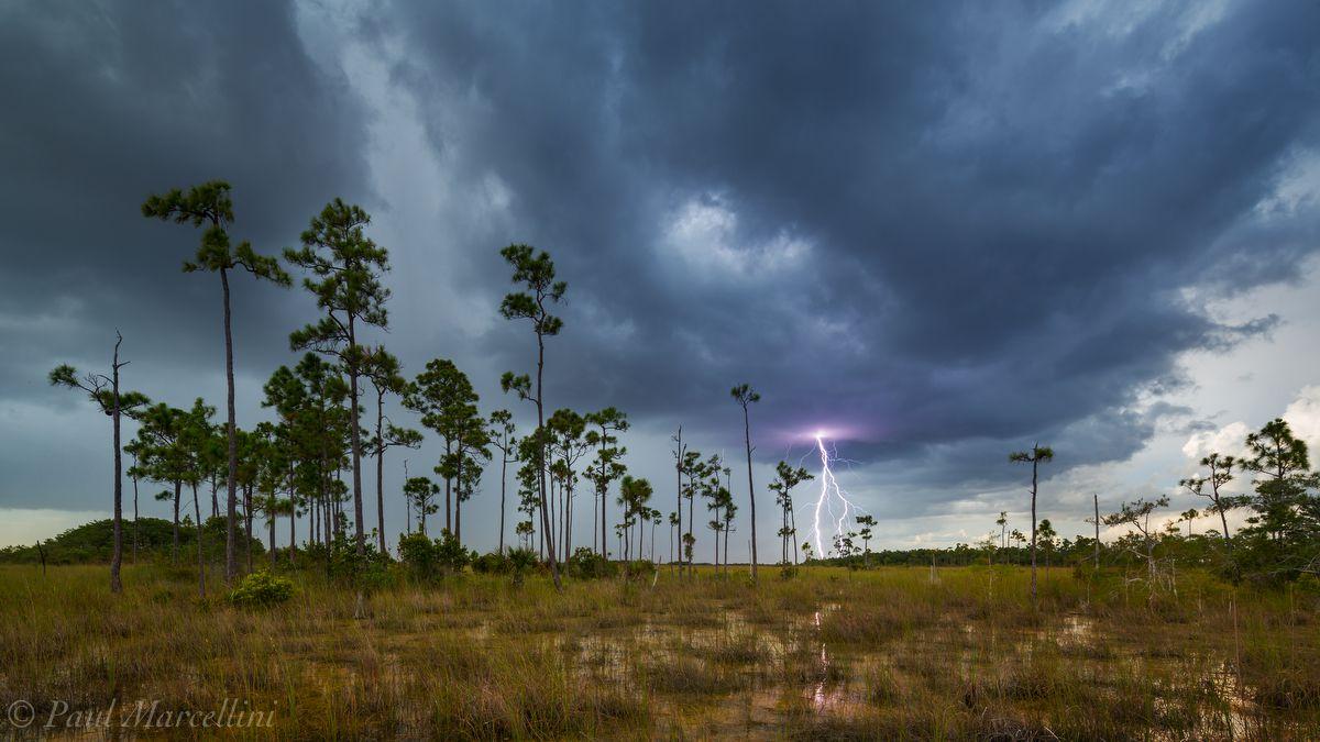 Distant lightning strike
