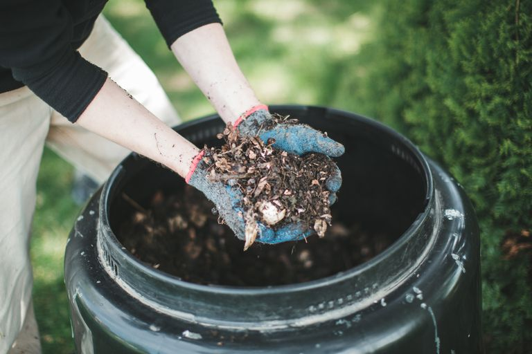 Man showing compost