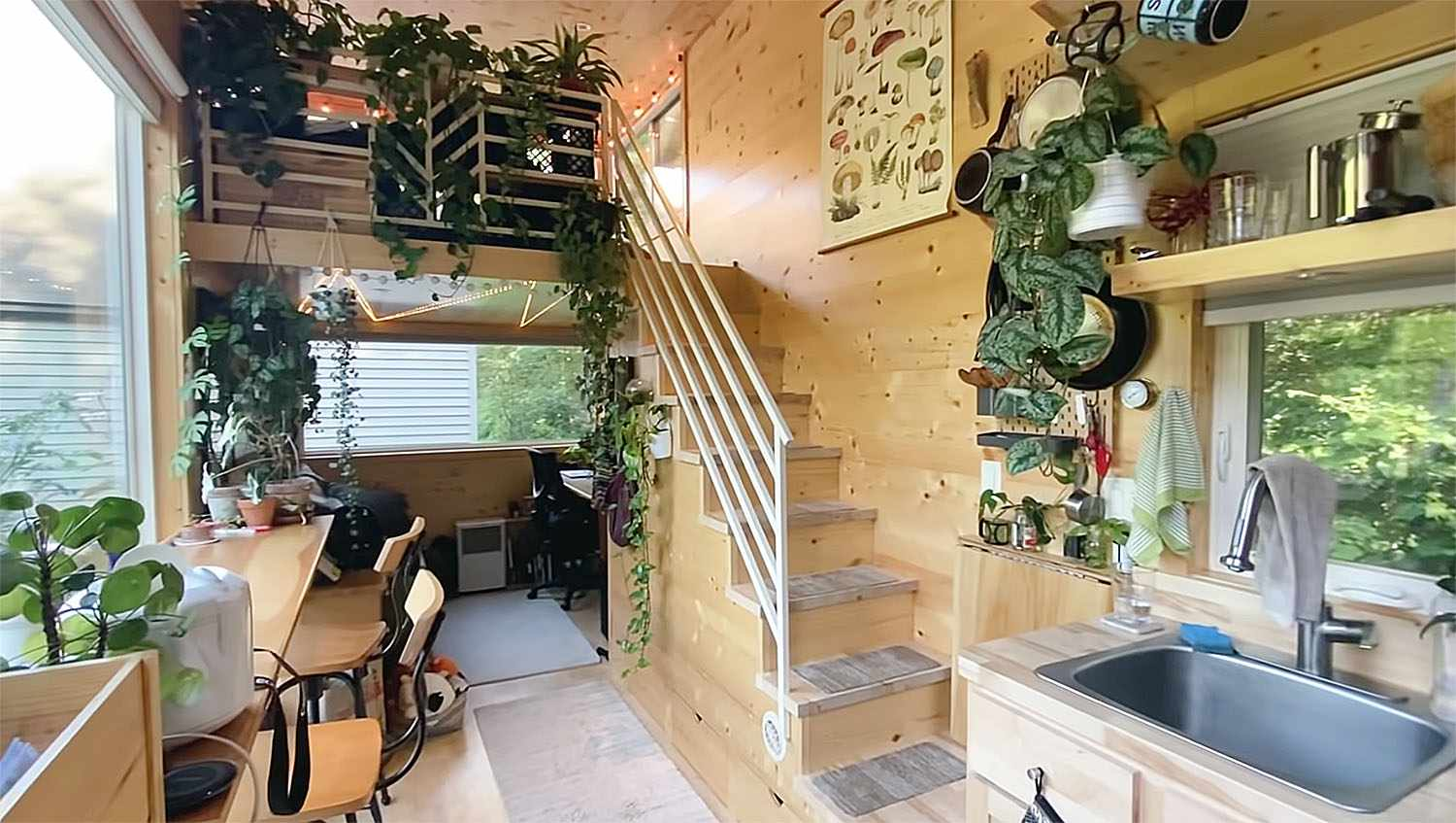 tiny house with houseplants counter